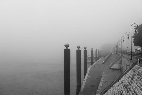 "La imagen de la semana: ""Morning fog I - Arles, Francia"" de Rodrigo Gómez"
