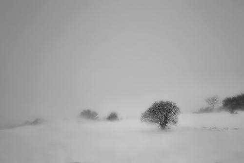"""La imagen de la semana: """"Solitude during the storm"""" de Ferran Jordà"""
